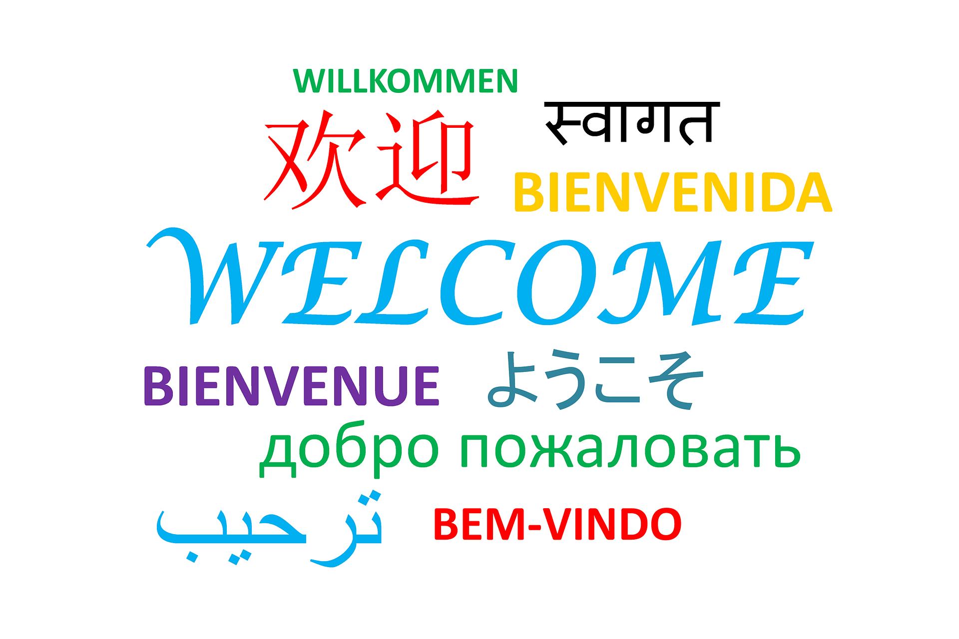 Výuka jazyků: Kdy s ní začít a jaký model je nejvhodnější?